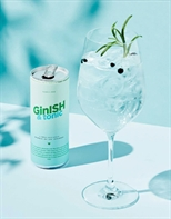 GinISH & tonic 25cl